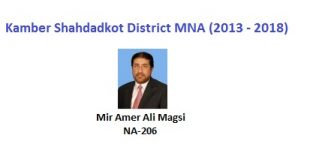 Kamber Shahdadkot MNA Pics - Mir Amer Ali Magsi