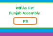 Punjab Assembly MPA List PTI - Election 2018