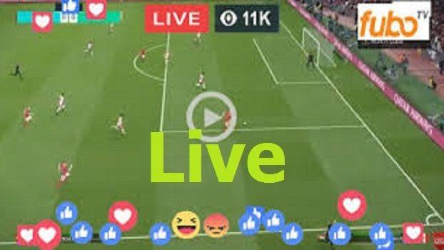 Live World Football Online | Cameroon vs Niger (CAMvsNIG) Free Soccer Stream | World Friendly International 2021 | Live Score